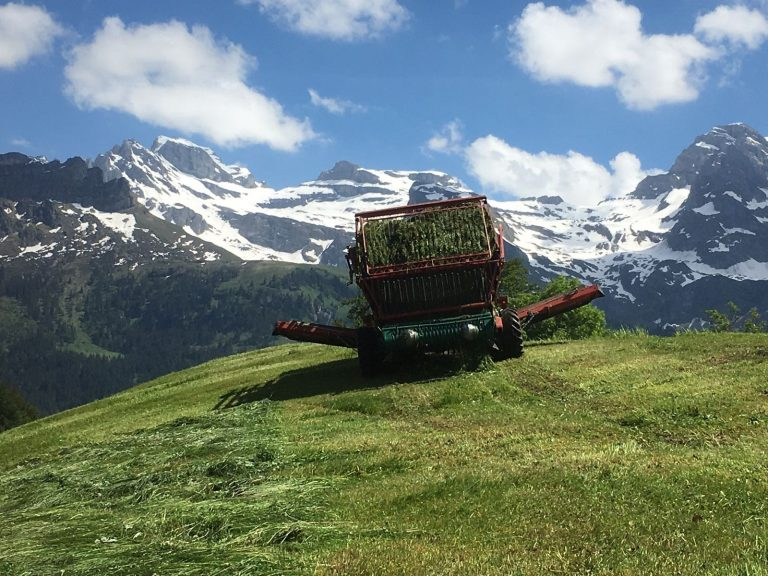 Arbeiten auf dem Bergland